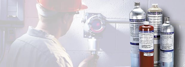Maintenance and calibration of fixed gas detection systems