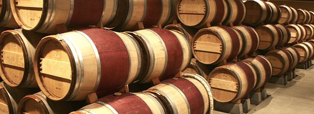winery & brewery gas detection devices: carbon dioxide gas detector Carbon dioxide against CO2 hazards
